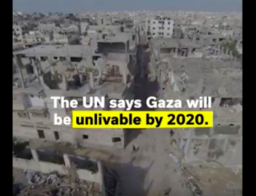 VIDEO: Everyday life in Gaza