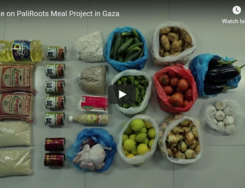 Video: Update on the PaliRoots Meal Project in Gaza